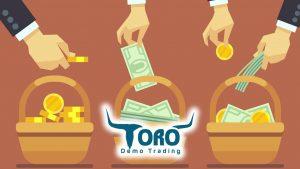 eToro diversification